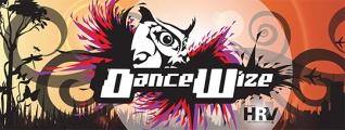 DanceWizeLogo